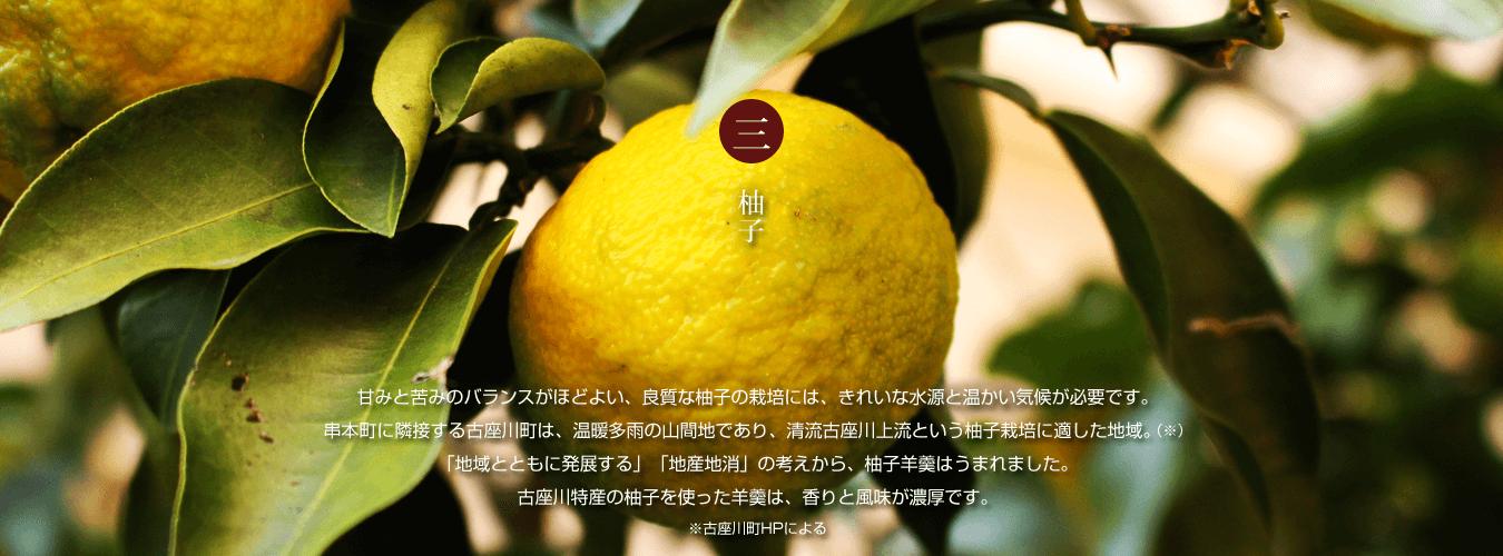 和歌山古座川の柚子